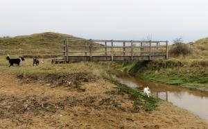 New bridge over stream leading to bridle path