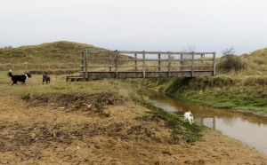 New bridge over stream leading to bridle path