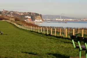 View from Penarth cliff top