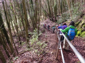 Descending steeply to cross the stream