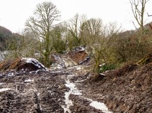 Cwm Callan devastation