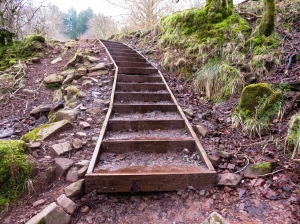 New steps at Blaen-y-glyn