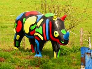 Multi coloured rhino