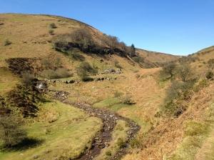 Nant Bwch Valley