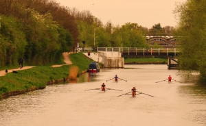 Rowers on the canal from Rea Bridge