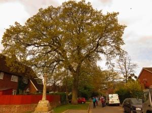 Oak and stone cross at Hempsted