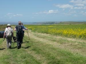 walking on the Wales Coastpath