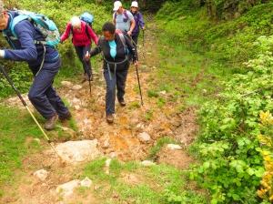 Muddy track below Cefn Bryn