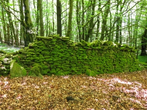 Lovely old stone wall