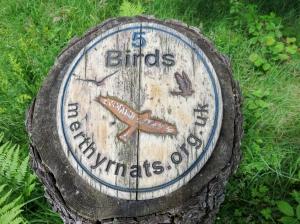 Penmoelallt Wood trail marker