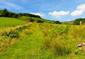 Steep grassy bridleway
