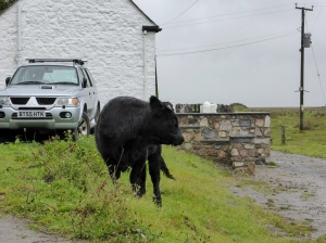 Local resident outside Pill Cottage
