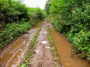 Burdonshill lane