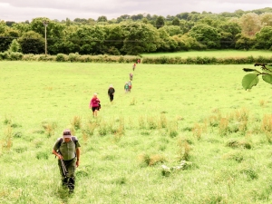 Crossing fields to St Andrews