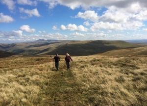 Climbing the hillside above Fforest Fawr