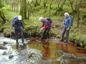 Fording the stream