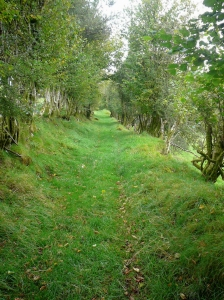 Green lane to Blaencennen Farm