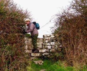 Climbing Stone stiles