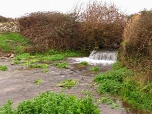 Flooded Nash Brook