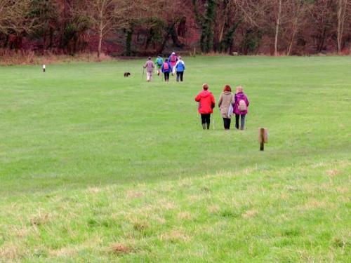 Crossing main meadow Porthkerry