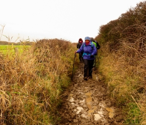 Muddy paths towards Nash Point