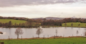 View across Cwm Hedd Lake
