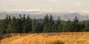 Central Beacons from Mynydd Maen