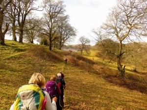 Crossing fields back to Trelewis