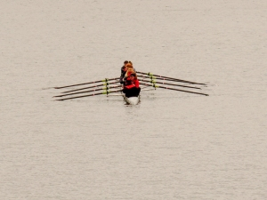Rowers on the River Taff