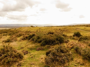 Cross dyke Gelligaer Common