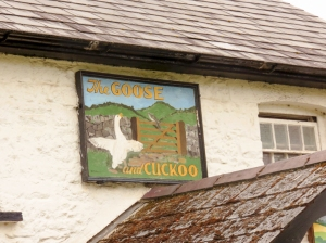 Goose and Cuckoo