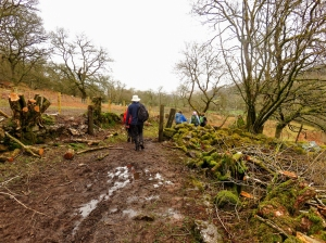 Muddy bridleway on way to Cwm Porth