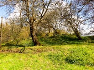 Castell Meredydd