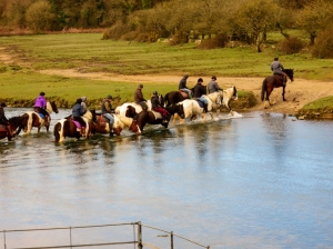 Horses crossing the ford