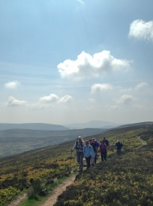 Ridge above the Grwyne Fechan Valley