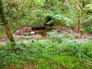 Old Sawmill in Millwood