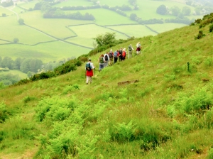 Descending from Bryn Arw