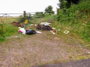 Rubbish in Gilbert Lane