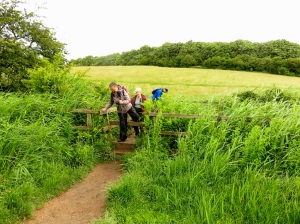 Crossing the Sully Brook