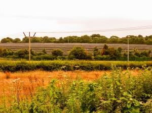 Biglis solar panel farm