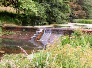 Weir at Salmon Leaps