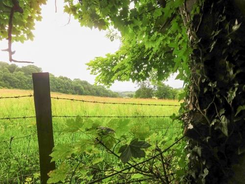 Michaelston valley towards Garth Hill