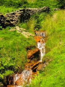 Pretty brook