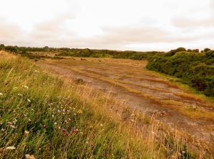 Rhoose quarries (disused)