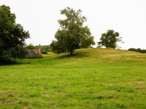 Castle Arnold