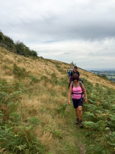 Descending from Bryn Arw