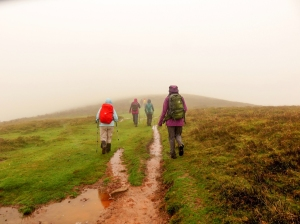 offas dyke on hatterrall hill