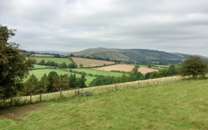 on Hopsey Hill ridge