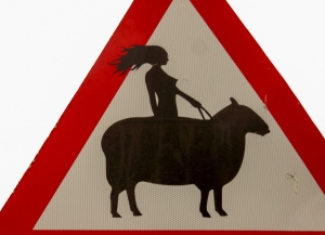 altered road sign