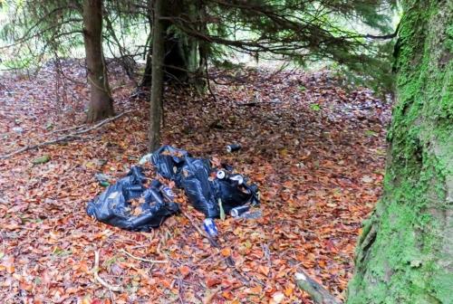 rubbish in coed coesau whips